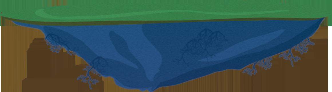 Adoptables Island