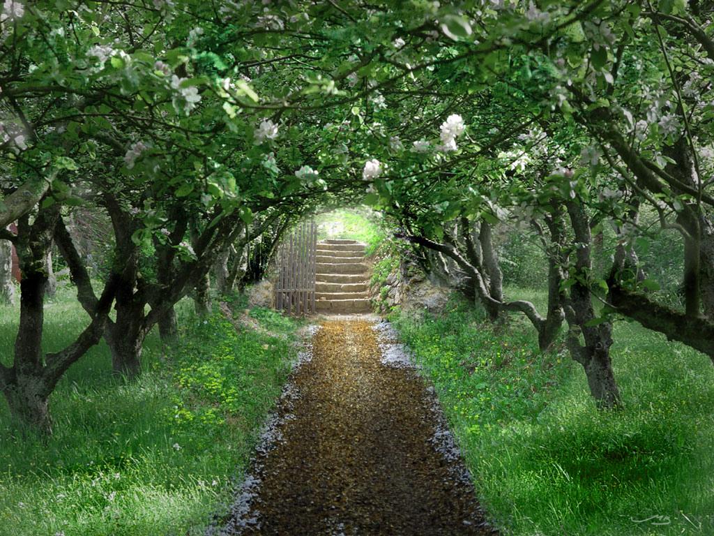 Collection The Secret Garden By Techgnotic On Deviantart