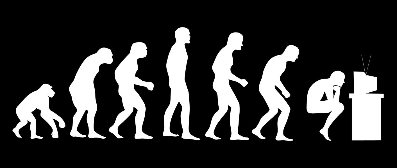 essay charles darwin theory evolution  essay charles darwin theory evolution