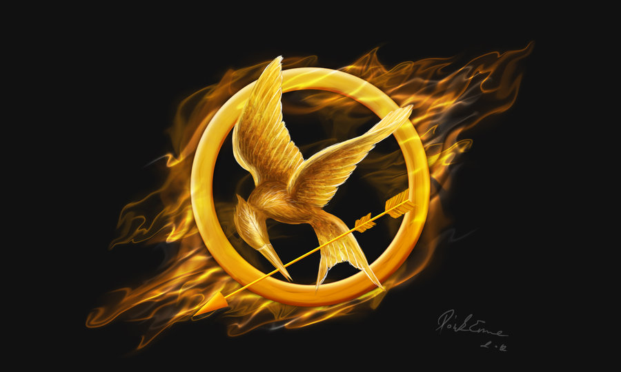 The Hunger Games Accidental Statement Of Protest By Techgnotic On